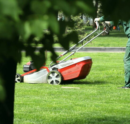 lawn-care-names